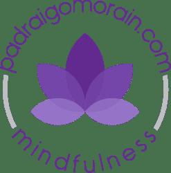 Mindfulness courses Ireland - Padraig O'Morain
