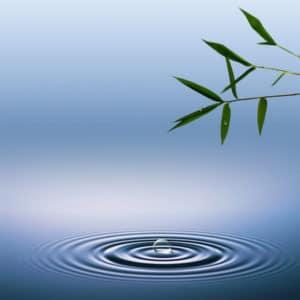 mindfulness course dublin evening