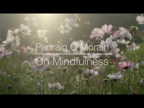 Cork Mindfulness Morning Course – 12 Nov 2017